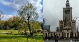 Wiejskie klimaty czy centrum miasta? - jak spędzamy majówkę