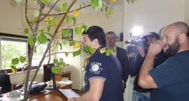 Wycięte 700 drzew,  4 tys. pójdzie pod topór. Akcja Lipa na Białołęce przeciwko masowej wycince
